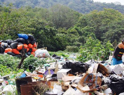 NCA une fuerzas con la Universidad de Florida para resolver el problema de los residuos sólidos de la comunidad
